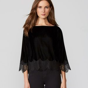 Bailey 44 Fade to Black Lace Top
